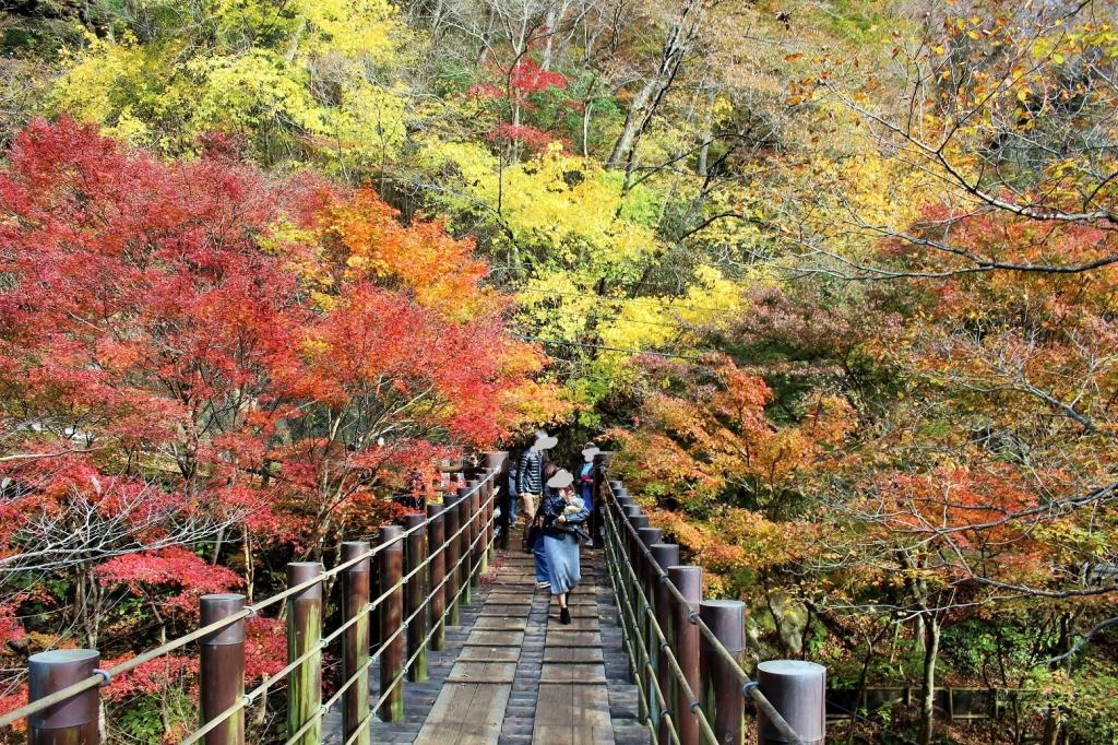 花貫渓谷の橋