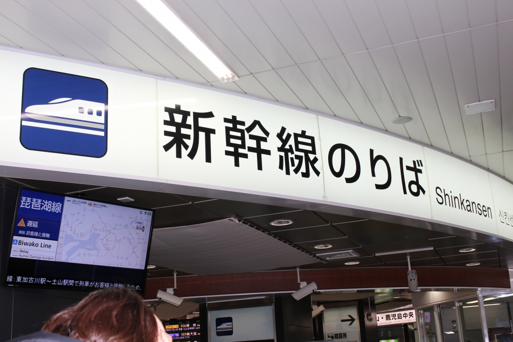 IMG_9817.JPG