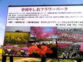中川フラワーパーク1
