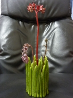 花瓶 P1130134