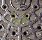 電気カエル-3.jpg