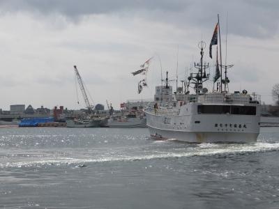 近海マグロ延縄漁船