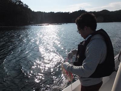 マグロ漁師になりたい