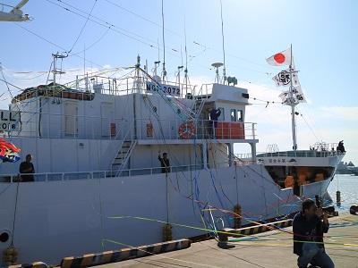 遠洋マグロ漁船の出港