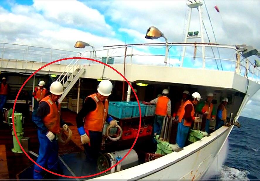 遠洋マグロ延縄漁船 操業