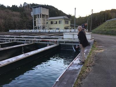 遠洋マグロ漁船 研修場所の視察