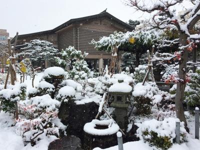 初雪と記念館前庭