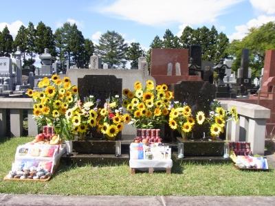 命日の墓参り