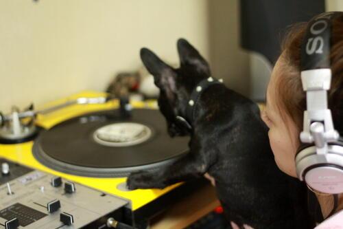 DJ BECKのスクラッチ