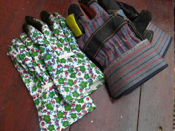 近くのお店でSweetieがおそろい手袋買ってくれました