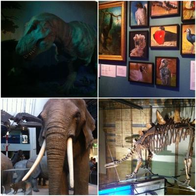 ロンドンの自然歴史博物館