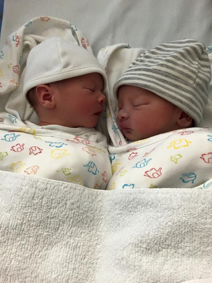 双子誕生しました。