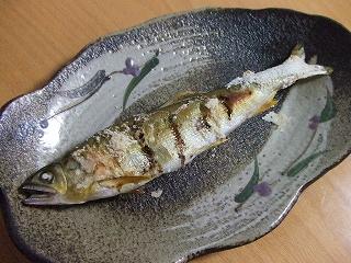 20090520夕食 鮎の塩焼き
