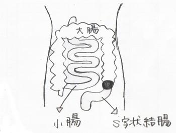 3tsubo.jpg