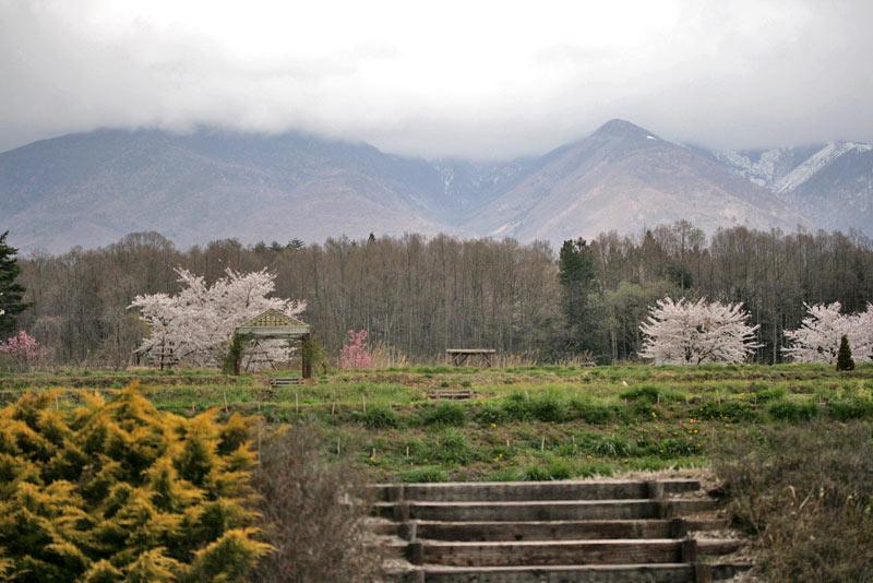 フィオーレ、八ヶ岳側景観