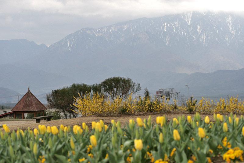 フィオーレ、南アルプス側景観