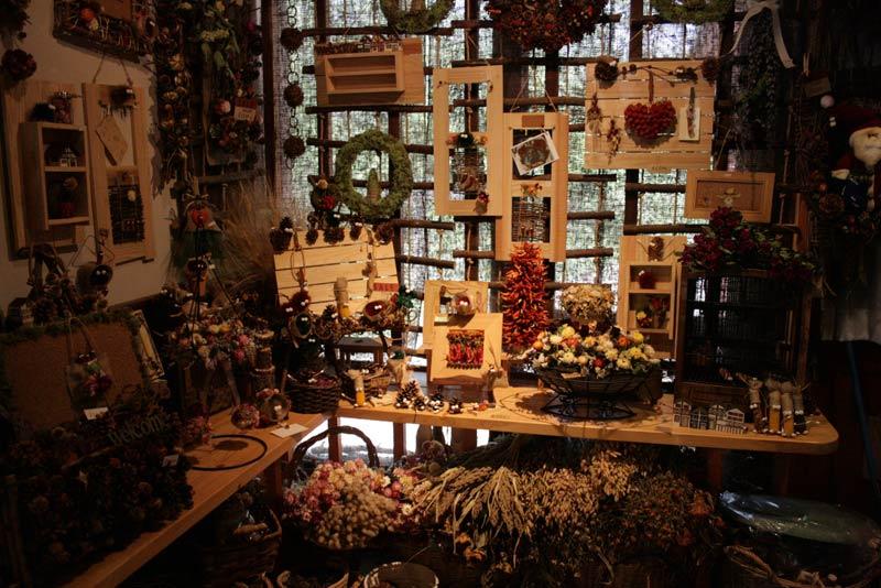 森の日曜日、店内1