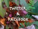 twitter&Facebook
