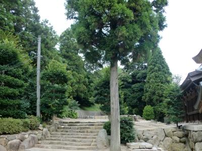 辰尾神社7