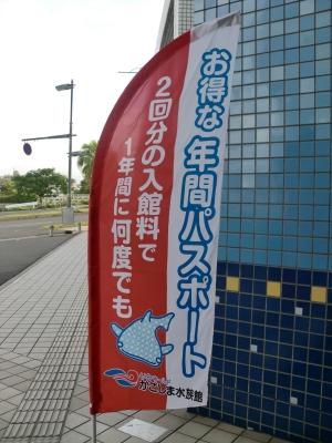 鹿児島水族館4
