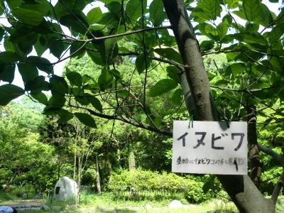 緑地公園7