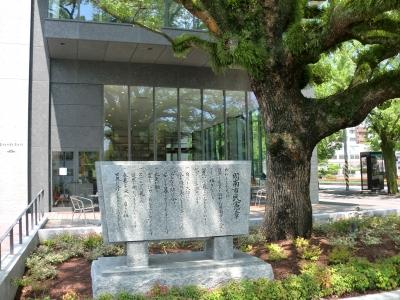 市役所庁舎3