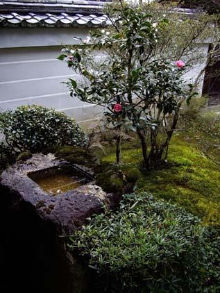 お庭の手水鉢