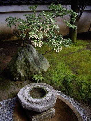 重森三玲のお庭4 手水鉢とお花