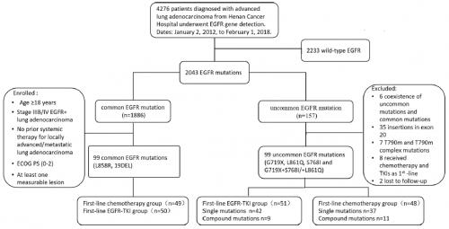 肺癌, EGFR, uncommon