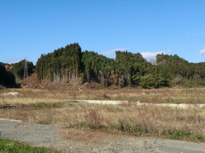新井田館跡