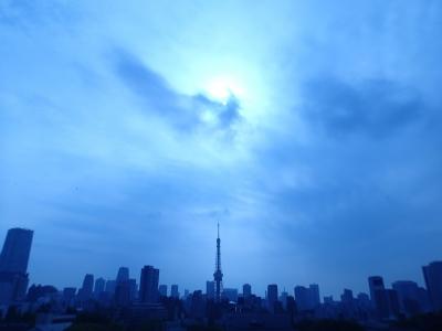 20140429頭強タワーをテレ朝から1