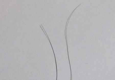 kirari4-3.jpg