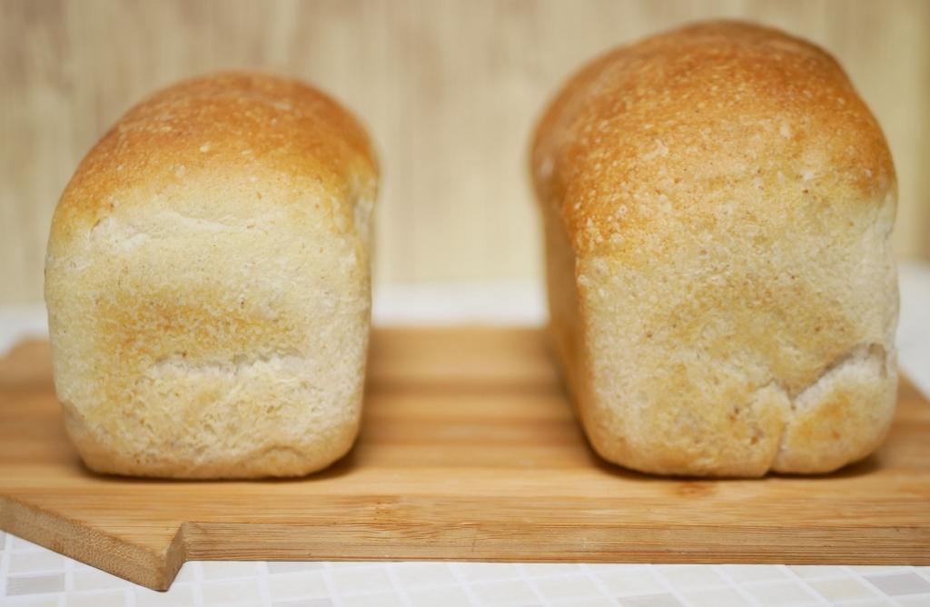 20200817-F001-リーンなワンローフ食パン(梅酵母) ゆめちからブレンド(左)とゆめちから100(右)で作り比べ2.JPG