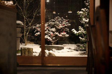 070114夜の庭