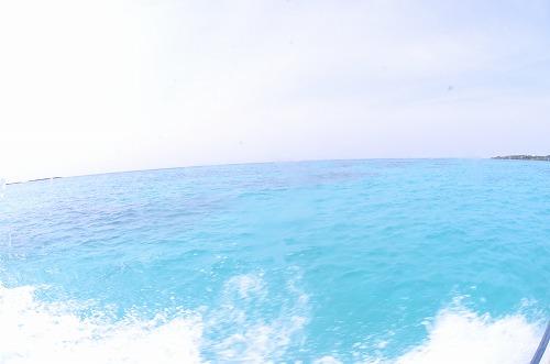 与論 ダイビング