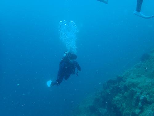 ダイビング 南部