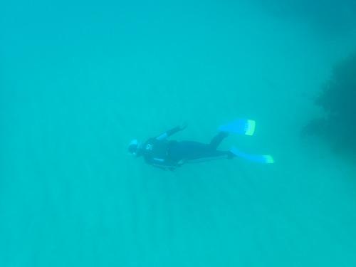 竹野 スキンダイビング
