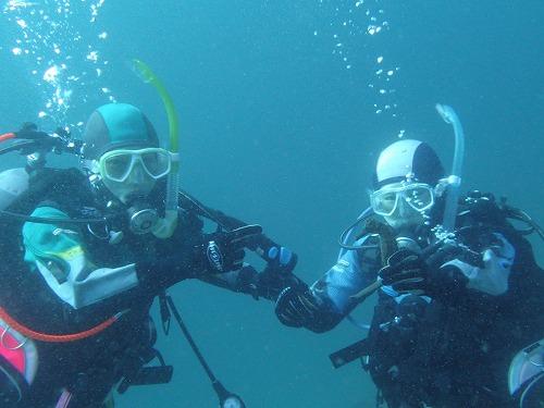 ダイビング 鵜来島