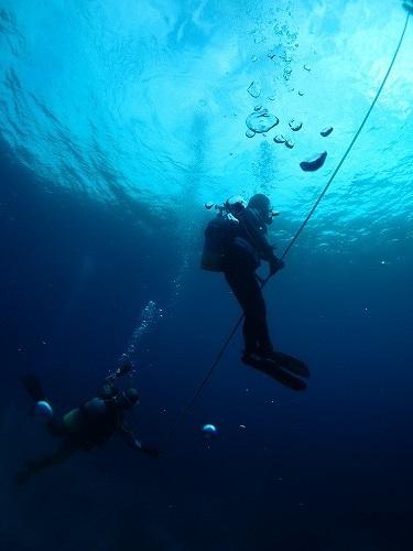 与論島 ダイビング