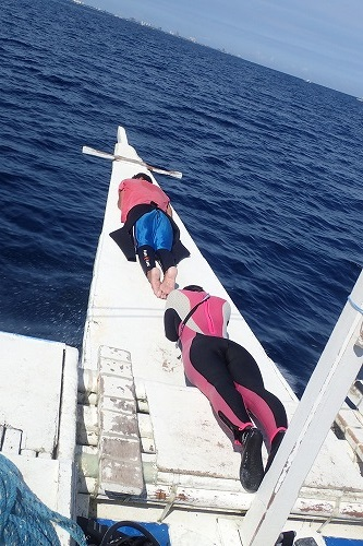 マクタン ダイビング