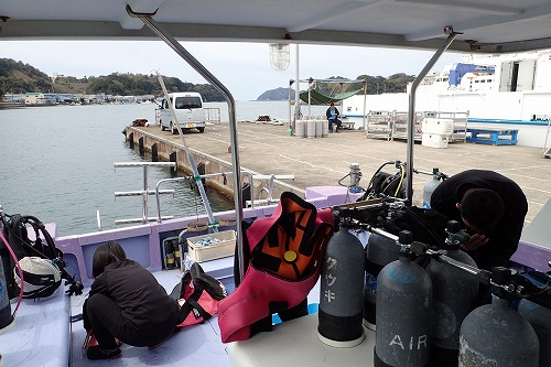 鵜来島 ダイビング