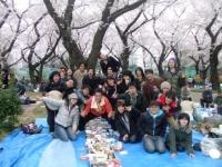 2010hanami4.JPG