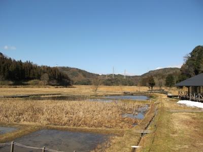 快晴の中池見