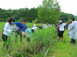 行政マンツアーで江掘り体験