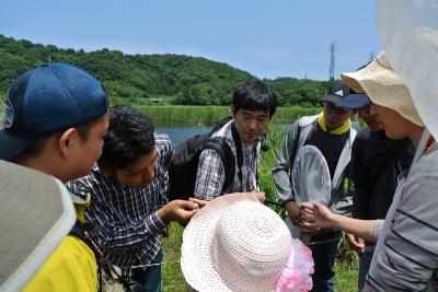 自然観察会「中池見のトンボたち」