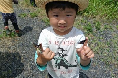 チョウトンボを指にとめているちびっこ