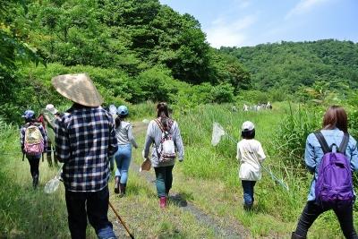 自然観察会「中池見のトンボたち」チラシ