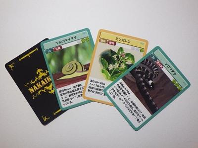 生き物カード