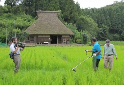 島ちゃん草刈り