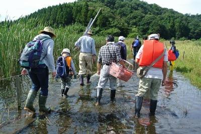 湿地の水を調べてみよう